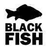 BLACK FISH STORE